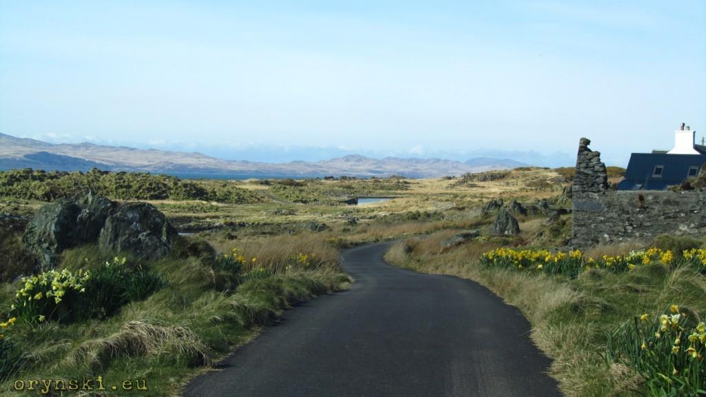Droga w pobliżu Keillmore