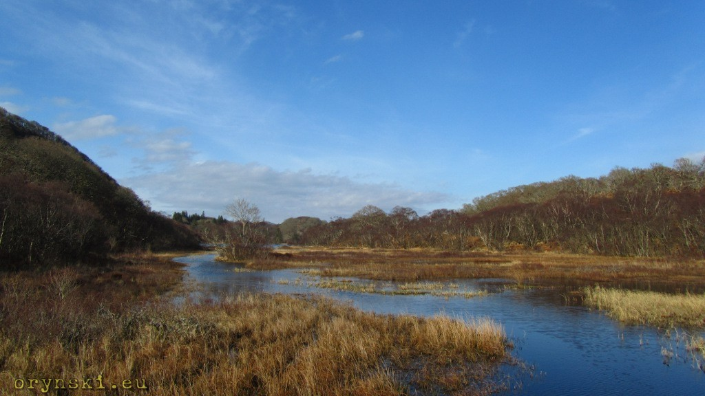 Taynish Nature Reserve